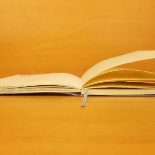 diritto di citazione opera riproduzione parziale libro indicazione fonte